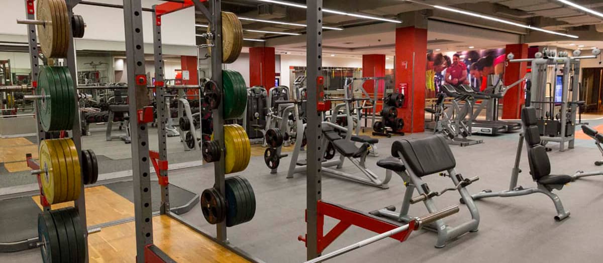 weights_area_2